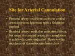 site for arterial cannulation1