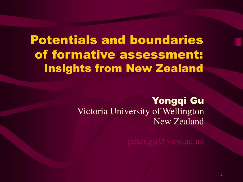 potentials and boundaries of formative assessment insights from new zealand