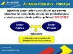 alianza p blico privada
