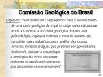 comiss o geol gica do brasil2