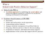 what is school wide positive behavior support
