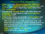 what is a web client ii