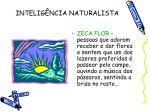 intelig ncia naturalista1