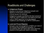 roadblocks and challenges