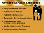 nevada s services landscape