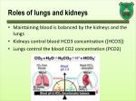 roles of lungs and kidneys