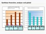 synth se financi re analyse co t global
