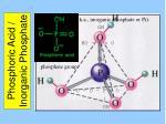 phosphoric acid inorganic phosphate