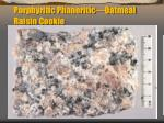 porphyritic phaneritic oatmeal raisin cookie