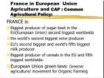 france in european union agriculture and cap common agricultural policy