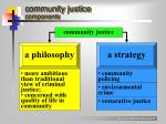 community justice components
