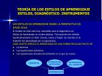 teor a de los estilos de aprendizaje estilos diagn stico instrumentos