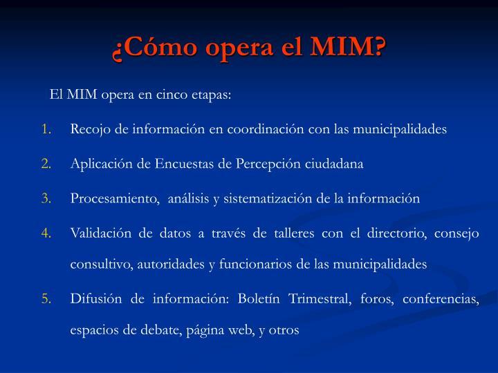 ¿Cómo opera el MIM?