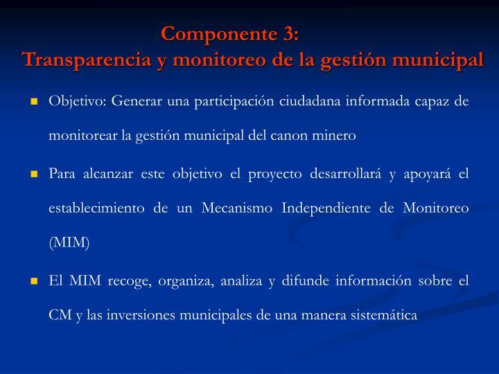 Componente 3: