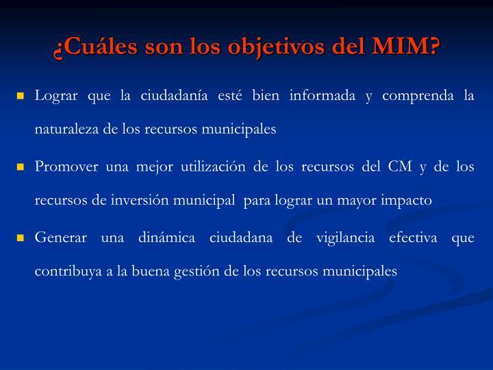 ¿Cuáles son los objetivos del MIM?