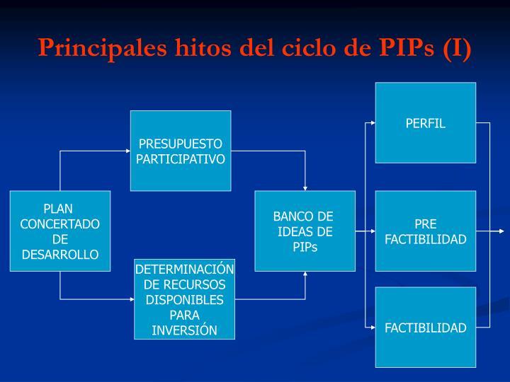 Principales hitos del ciclo de PIPs (I)