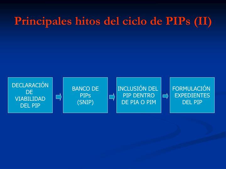 Principales hitos del ciclo de PIPs (II)