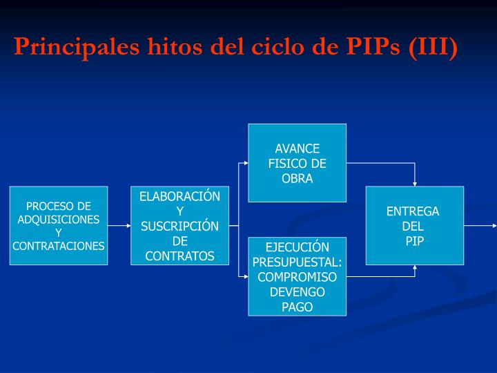 Principales hitos del ciclo de PIPs (III)