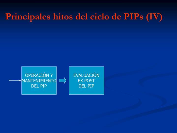 Principales hitos del ciclo de PIPs (IV)