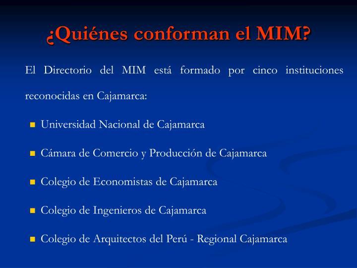 ¿Quiénes conforman el MIM?