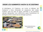 desde los elementos hasta el ecosistema