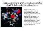 rappresentazione grafica mediante analisi comfa della molecola di paclitaxel1
