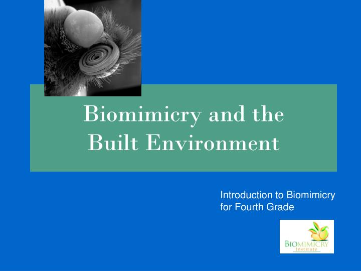 biomimicry and the built environment n.