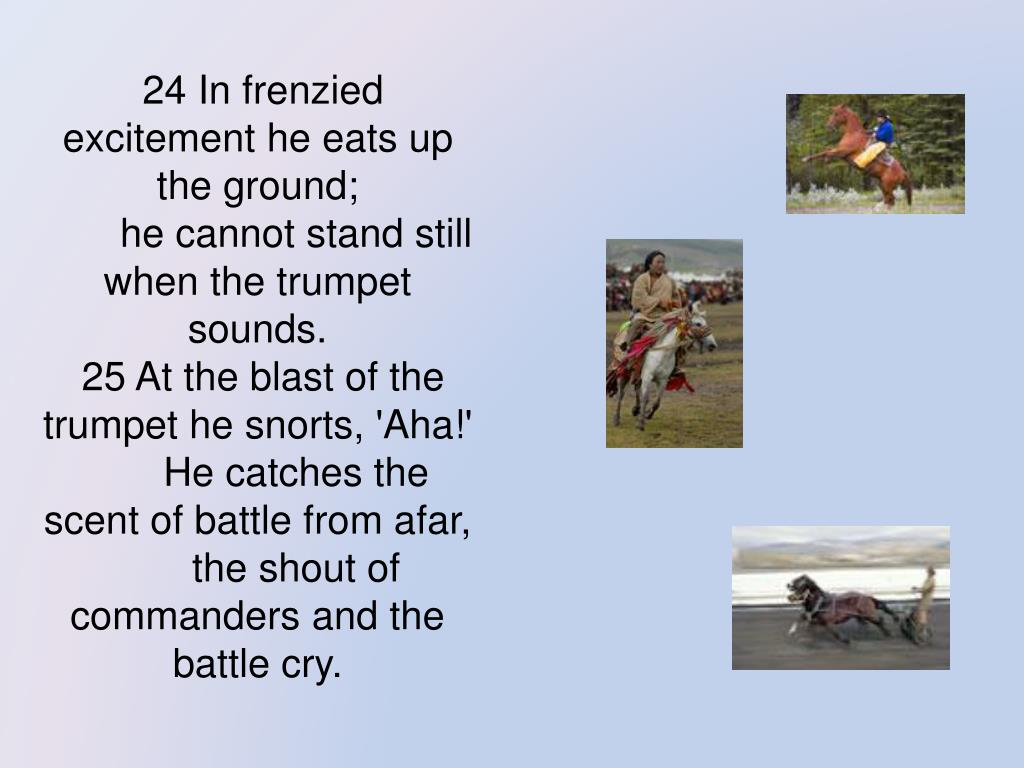 24 In frenzied excitement he eats up the ground;