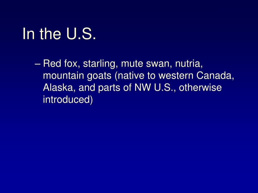 In the U.S.