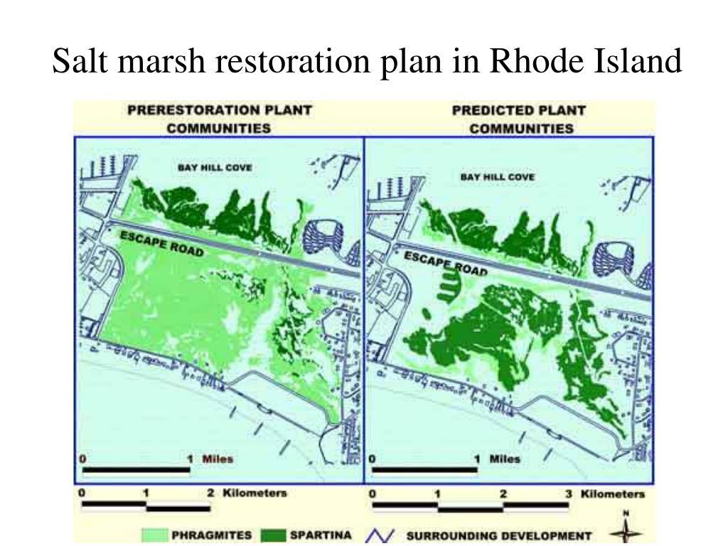 Salt marsh restoration plan in Rhode Island