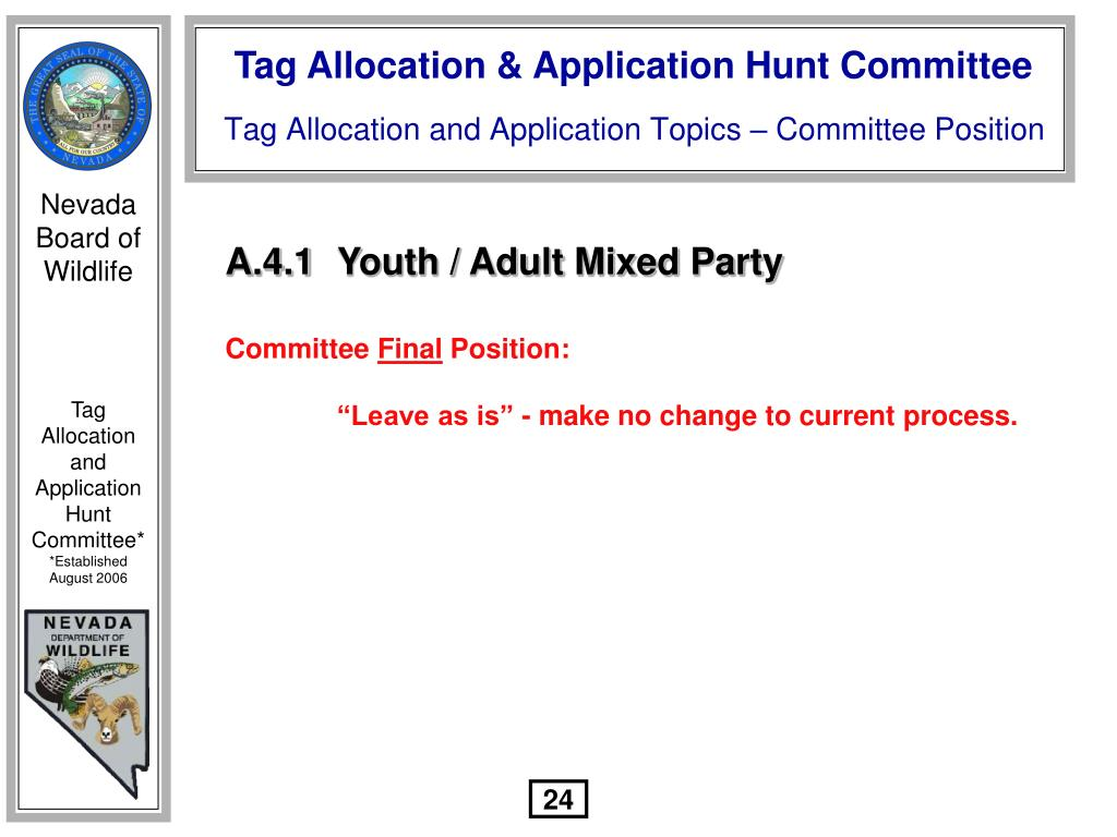 A.4.1	Youth / Adult Mixed Party