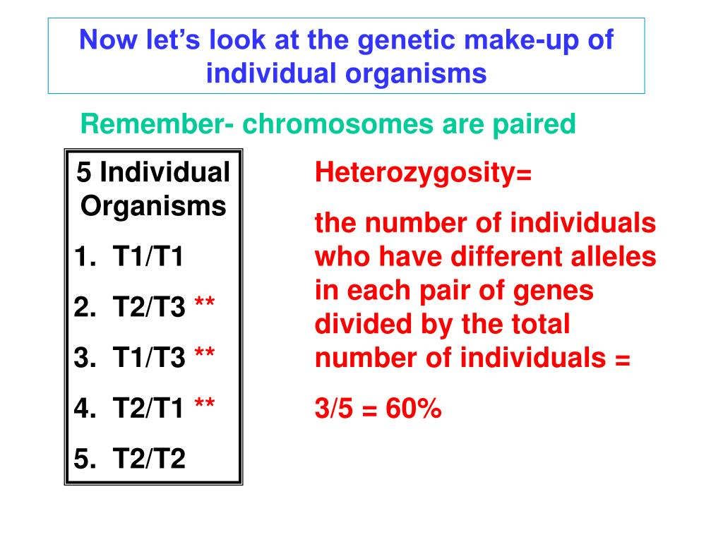 Now let's look at the genetic make-up of individual organisms