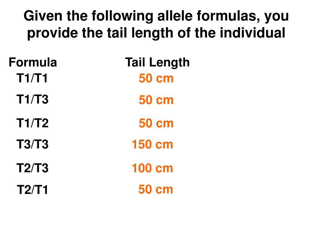 Given the following allele formulas, you provide the tail length of the individual