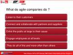 what do agile companies do