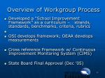 overview of workgroup process1