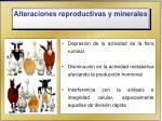 alteraciones reproductivas y minerales