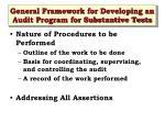 general framework for developing an audit program for substantive tests