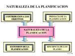 naturaleza de la planificacion