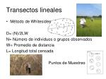 transectos lineales
