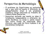 perspectiva da metodologia