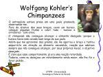 wolfgang kohler s chimpanzees