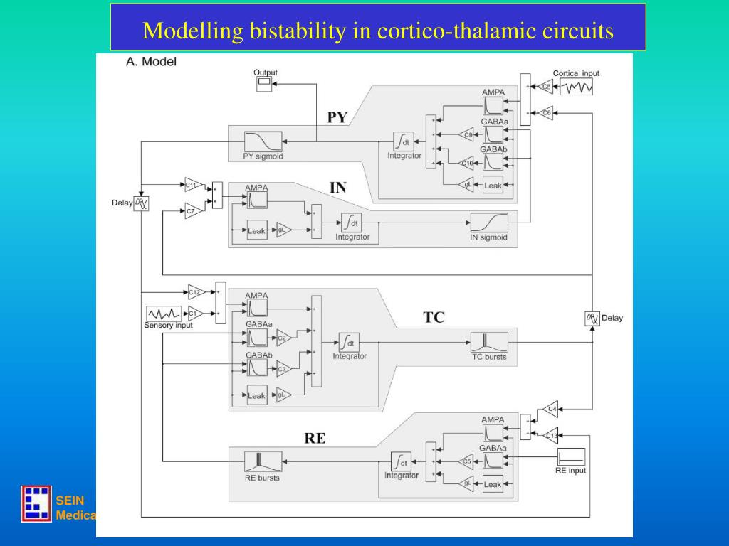 Modelling bistability in cortico-thalamic circuits