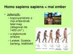 homo sapiens sapiens mai ember