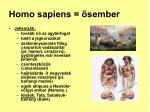 homo sapiens sember