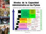 niveles de la capacidad administrativa en las pymes
