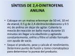 s ntesis de 2 4 dinitrofenil anilina