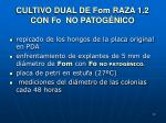 cultivo dual de fom raza 1 2 con fo no patog nico