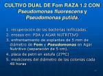 cultivo dual de fom raza 1 2 con pseudomonas fluorescens y pseudomonas putida