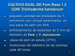cultivo dual de fom raza 1 2 con trichoderma harzianum
