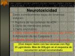 estudios sobre la neurotoxicidad